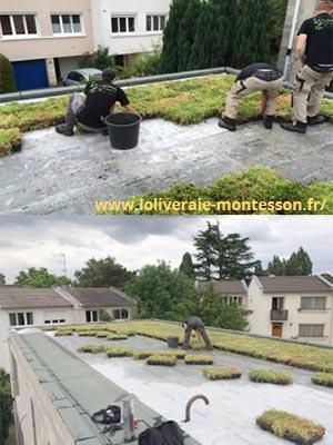 Sur une terrasse pose de la végétalisation