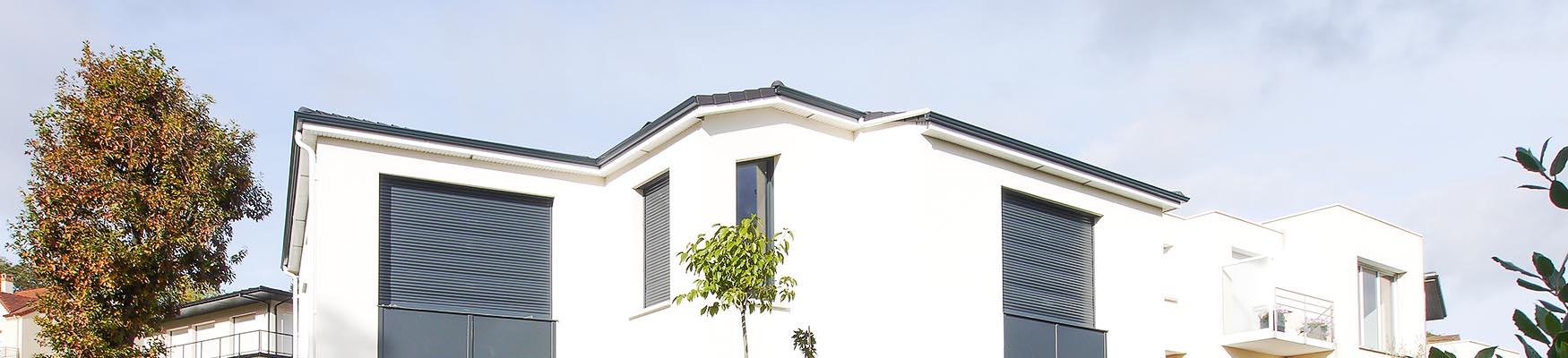 ligne de toit design